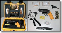 S&W Emergency Survival Tool Kit 460PD